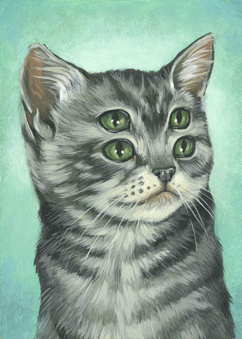 Casey Weldons Foureyed Kittens